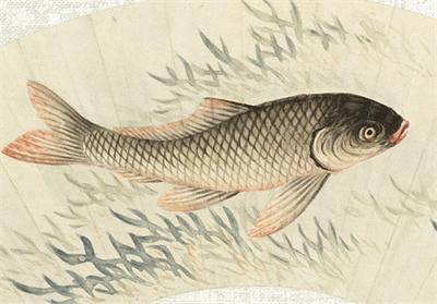 清 馬文麟 畫魚藻